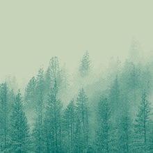 Background trees
