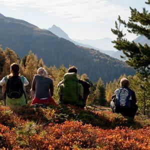 eine Gruppe von Personen sitzt auf einer Wiese und genießt den Ausblick in die hügelige Landschaft mit vielen Bäumen und grünen Berghängen