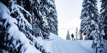 Ein Langläufer in der verschneiten Winterlandschaft