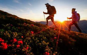 zwei Wanderer beim Sonnenaufgang, eine Blumenwiese im Vordergrund