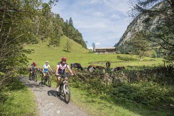Familie Grainer beim Radfahren