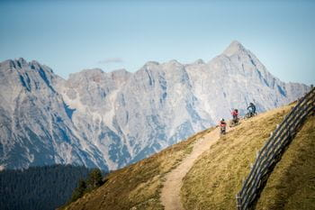 Downhill-bikers are climbing a mountain in the summery alps