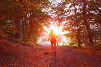 eine Person läuft in einer Allee, beschienen von der rötlichen Sonne