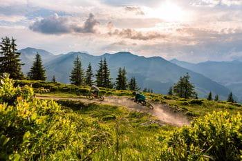 eine Trailstrecke, im Hintergrund der wolkendurchzogene Himmel, im Vordergrund grüne Alpenpflanzen