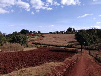 a Kenyan landscape with red soil