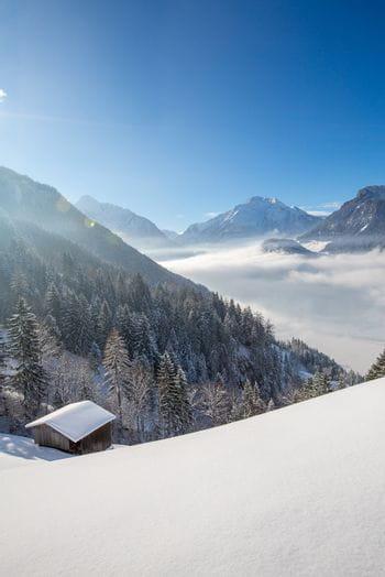 a snowy winter landscape is shown