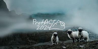 Ortovox PROTACT2024