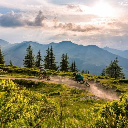 a trailtrack, in the background the cloudy sky, , im Hintergrund der wolkendurchzogene Himmel, in the forefront green alpine plants